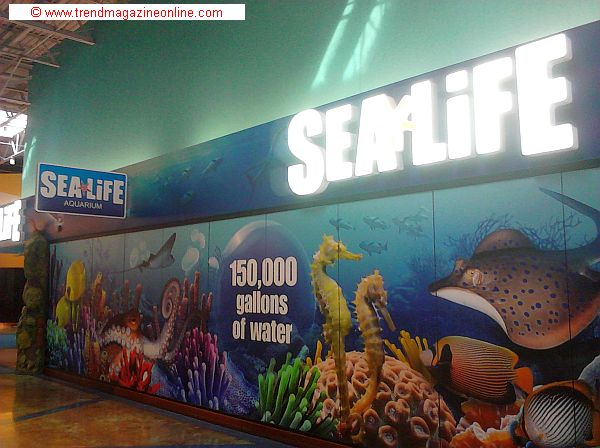 Trend magazine online review july 2014 sea life aquarium Concord mills mall aquarium